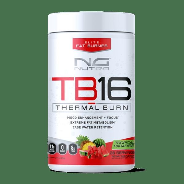 TB16-tropical-paradise